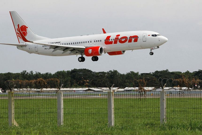 A Lion Air Boeing 737-800 plane prepares to land at the Sukarno-Hatta airport in Tangerang on the outskirts of Jakarta.