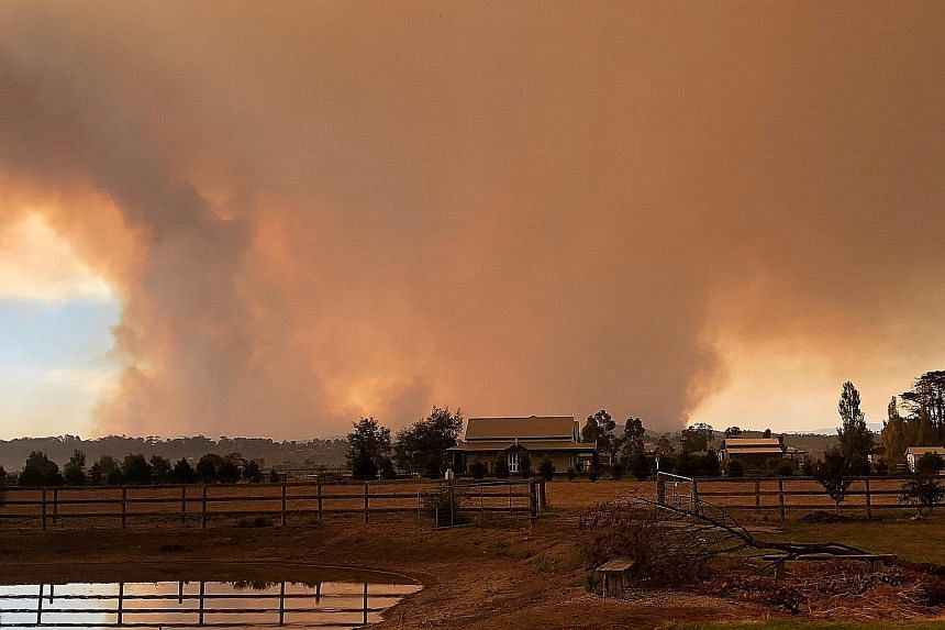 Smoke rising from a bushfire in the eastern part of Victoria state in Australia. The south-eastern state was the worst hit, with more than 2,000 firefighters, water-bombing aircraft and volunteers battling blazes yesterday.