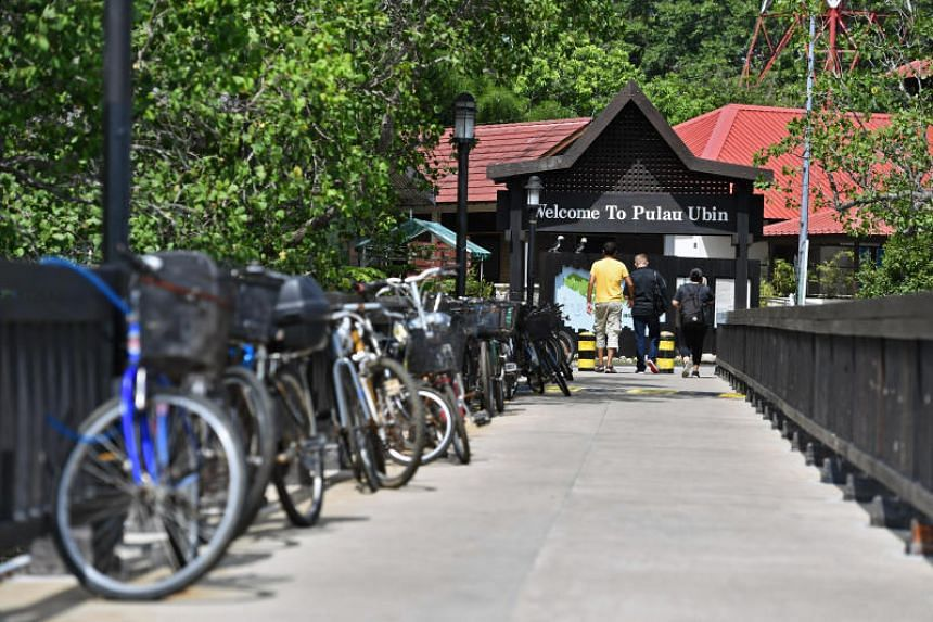 NParks should educate and guide visitors on how to live harmoniously with the natural environment on Pulau Ubin, says the writer.
