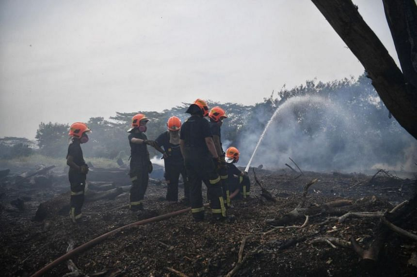The deep-seated fire, together with the abundance of thick vegetation nearby and windy conditions, prolonged the firefighting operation, said the SCDF.