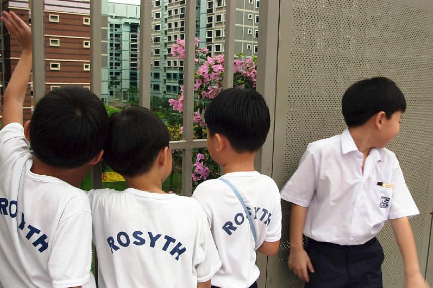 Three primary schools - Rosyth, Nanyang and Nan Hua - have introduced form classes with a mix of gifted and non-gifted pupils this year.