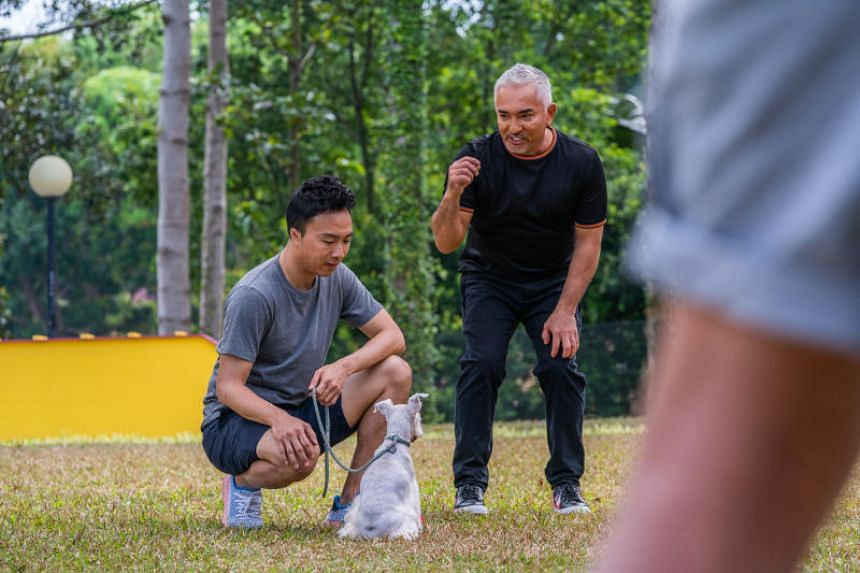 Cesar Millan was in town to film the third season of dog trainer competition Cesar's Recruit: Asia.