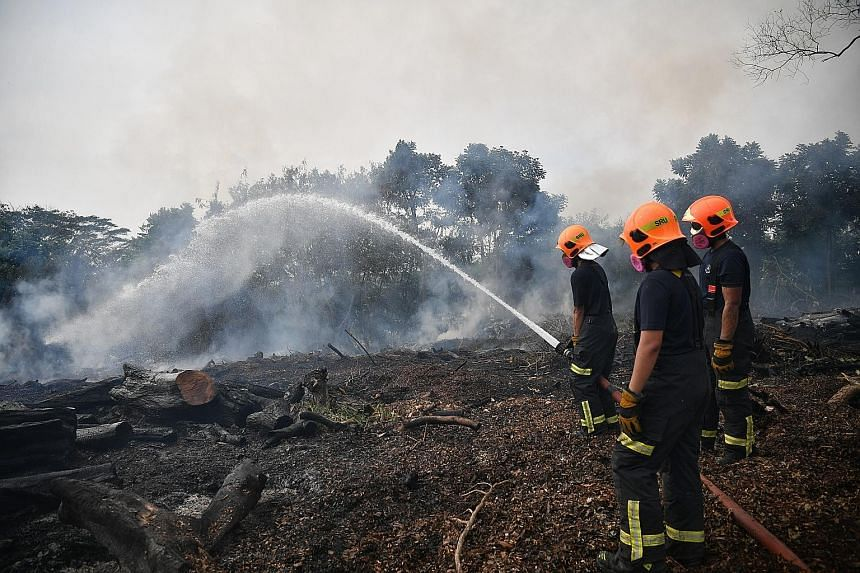 The SCDF brought the vegetation fire under control at 2am yesterday. It said at 10am yesterday that damping down operations were under way to prevent any rekindling from the hot burnt surfaces. The deployment yesterday was one of the longest such ope