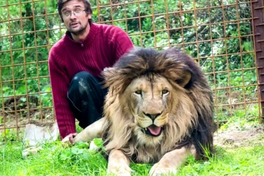 Michal Prasek brought the lion from Slovakia in 2016, causing a stir in the village and attracting media attention.