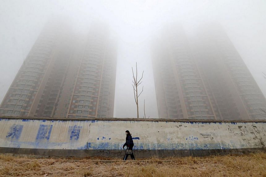 A woman wearing a mask on a polluted day in Handan, Hebei province, China, on Jan 12, 2019.