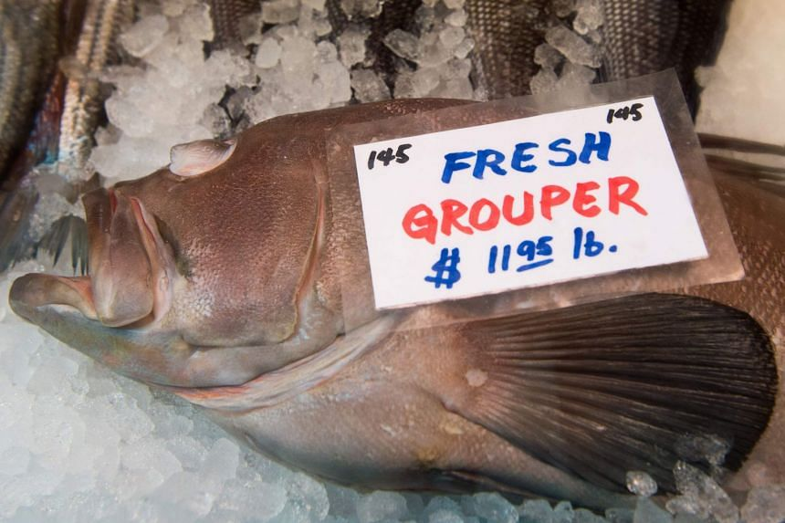 Grouper for sale in a file photo at Eastern Market in Washington DC.