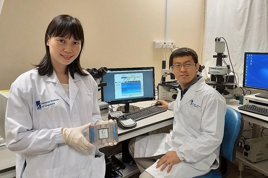 Dr Kong Say Li (left) and Dr Li Huipeng led the development of CORTAD-seq. The tool will help scientists understand how cancer cells mutate and develop drug resistance.