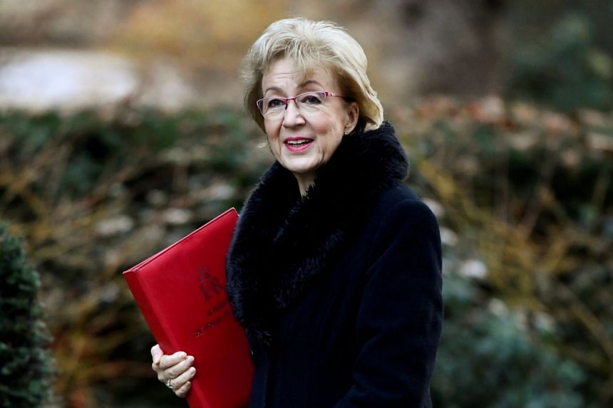 Leader of Britain's parliament Andrea Leadsom said that if the country left the EU without a withdrawal deal, it would be harder to guarantee the smooth flow of goods and people across the Irish border.