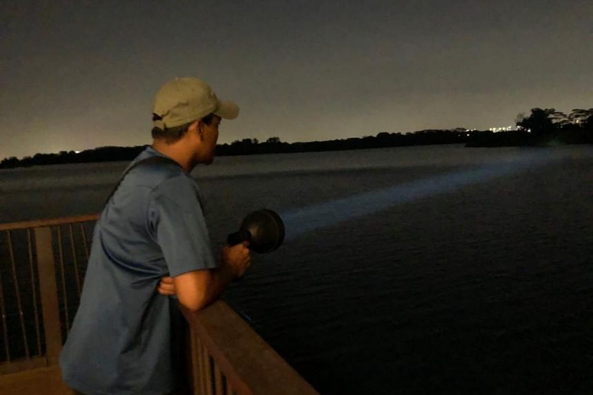 An NParks officer shines a torchlight across the water during night surveillance for a crocodile at Lower Seletar Reservoir.