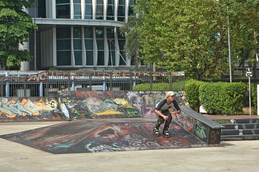 The Skate Park is part of the Somerset area that has been designated a Youth Belt, spanning the area from *Scape to the junction of Somerset and Killiney roads. For a start, young people will have a voice in revamping the Somerset area as part of larger p