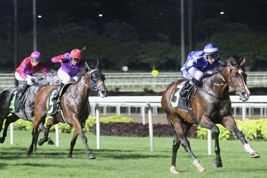Mikki Joy proving too good in last night's main $85,000 Class 2 race over 1,800m. He is touted to be a Singapore Gold Cup prospect by both his trainer and jockey.