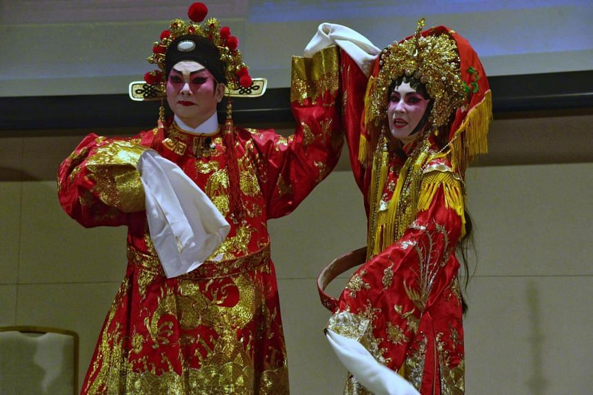 With strong support from the Government, several performances by local and overseas groups have been held in venues like the Singapore Chinese Cultural Centre, attracting young and old alike.