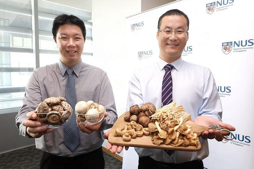 Dr Irwin Cheah (left) and Associate Professor Feng Lei, from the National University of Singapore, monitored over 600 seniors' intake of six types of mushrooms commonly eaten in Singapore.