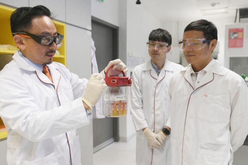 Associate Professor Kevin Tan carrying the Blastocystis organism in its storage container at the Yong Loo Lin School of Medicine at the National University of Singapore on March 14, 2019.