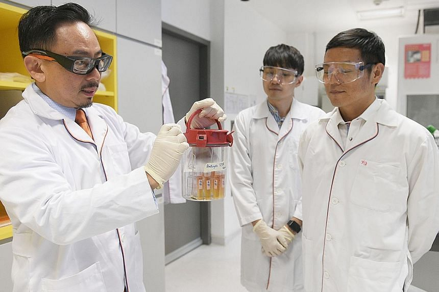 Associate Professor Kevin Tan showing the Blastocystis organism in its storage container yesterday. With him are post-doctoral research associate Chin Wen Png (centre) and Associate Professor Zhang Yongliang.