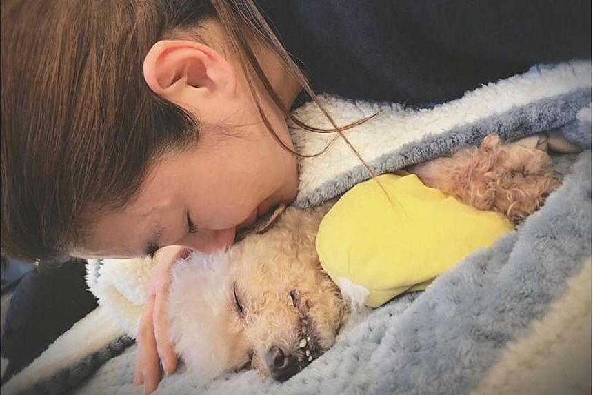 """GOODBYE, MY BELOVED: Taiwanese singer Selina Jen paid an emotional tribute to her dog Pinky after it died on Wednesday. In a tribute posted on her Instagram, Facebook and Weibo accounts, the S.H.E singer said: """"My baby, my beloved dog, my princess -"""