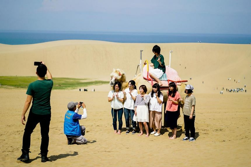 Fun-loving travellers can go camel riding, sandboarding and paragliding at Tottori's sand dunes in the summer.