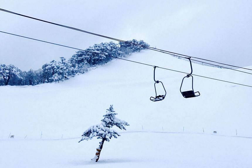 Ski lifts in in one of the many ski resorts in Mt Daisen, a volcanic mountain in Tottori Prefecture, Japan.