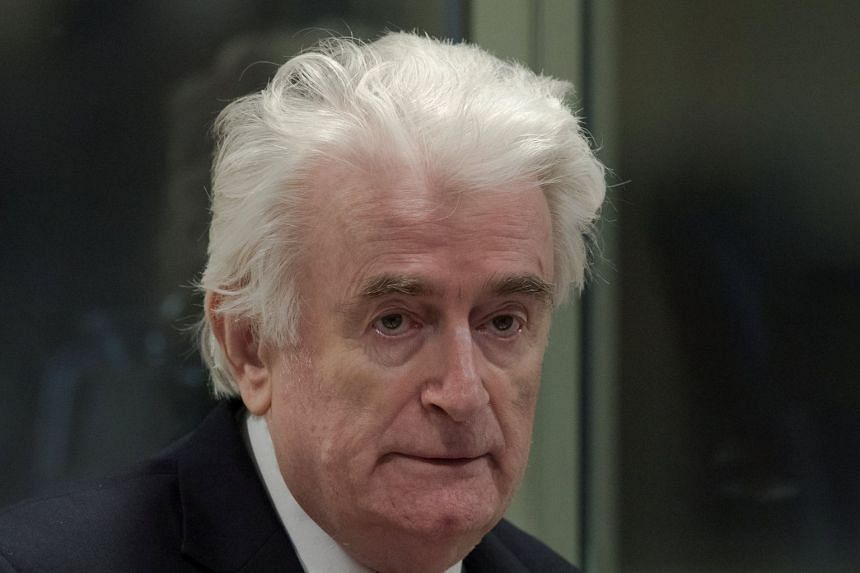 Karadzic at his appeal hearing in The Hague, Netherlands, March 20, 2019.