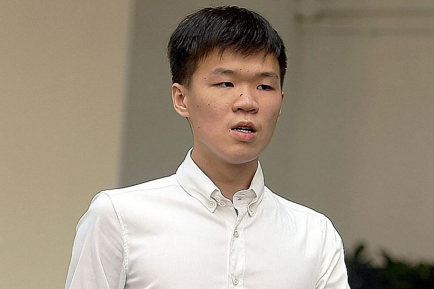 Joven Heng Gin How yesterday pleaded guilty to causing injury by riding his electric bicycle in a rash manner.