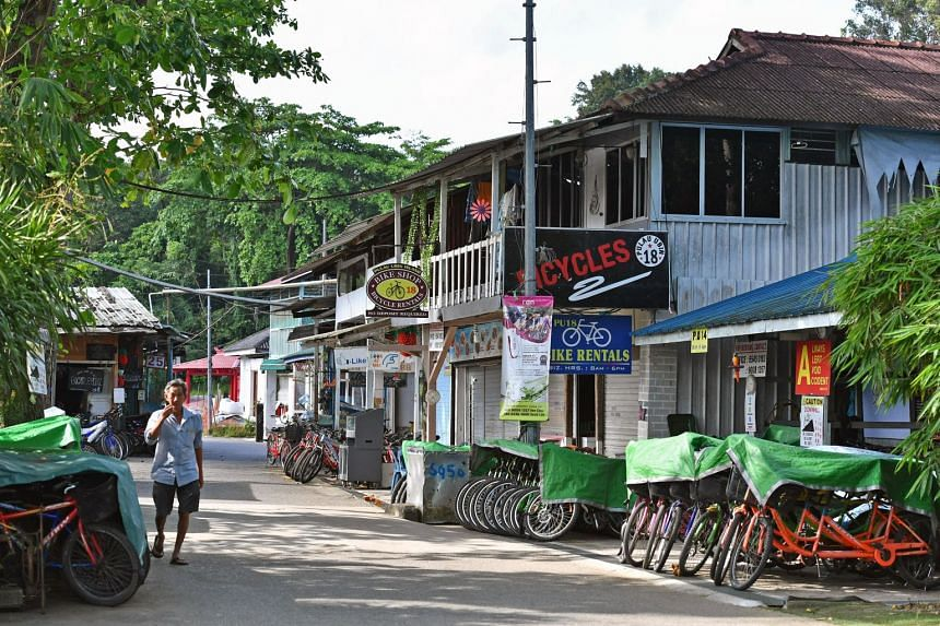 """NParks said that it is working with the Ubin villagers on their """"concerns about their leases and the structures they built""""."""
