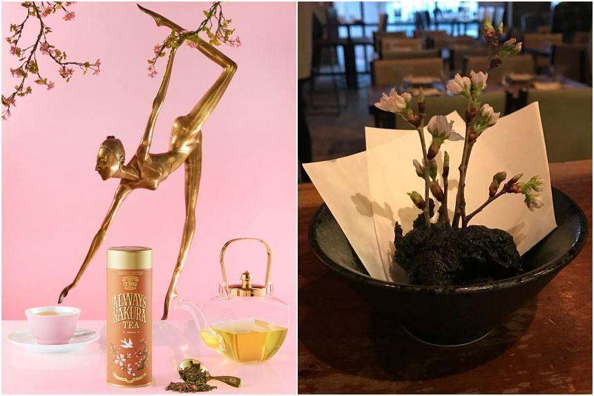 Homegrown luxury tea brand TWG Tea offers a floral green tea with notes of wild Rainier cherry and sweet blossoms (left), while Japanese restaurant Hashida Sushi's chef Kenjiro Hashida highlights the delicate sakura with sakura ebi bamboo charcoal te