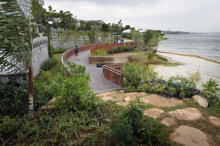 A section of the new walkway and lookout point along Rower's Bay, which is part of the Round Island Route, in Lower Seletar Reservoir.