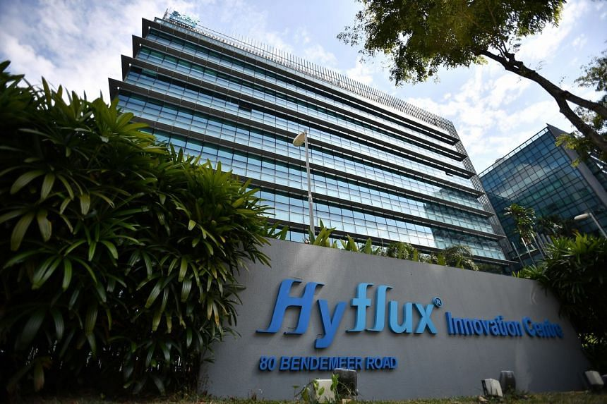 Temasek's investment in Hyflux was part of an initiative during the early 2000s to invest in Singapore small and medium-sized enterprises (SMEs), to support their growth in promising sectors, such as water technology.