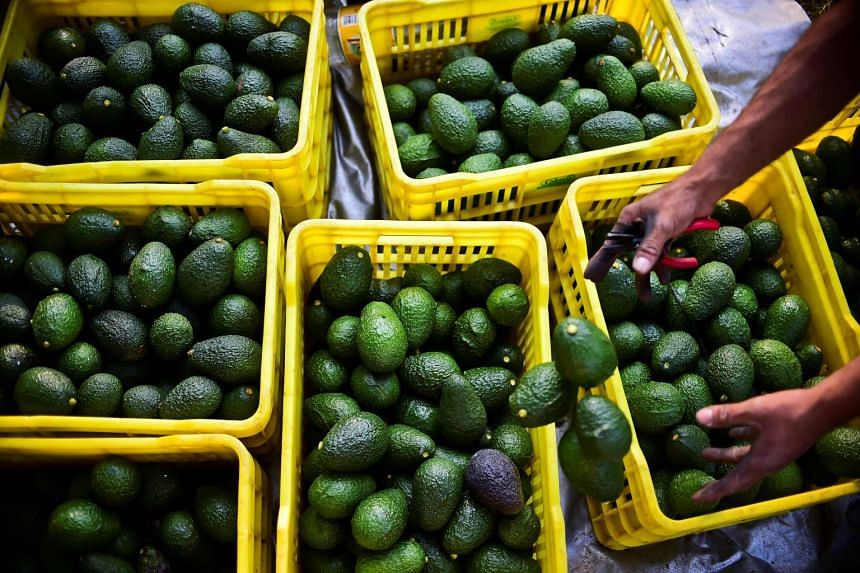 Avocado prices have jumped nearly 50 per cent over the last week alone.