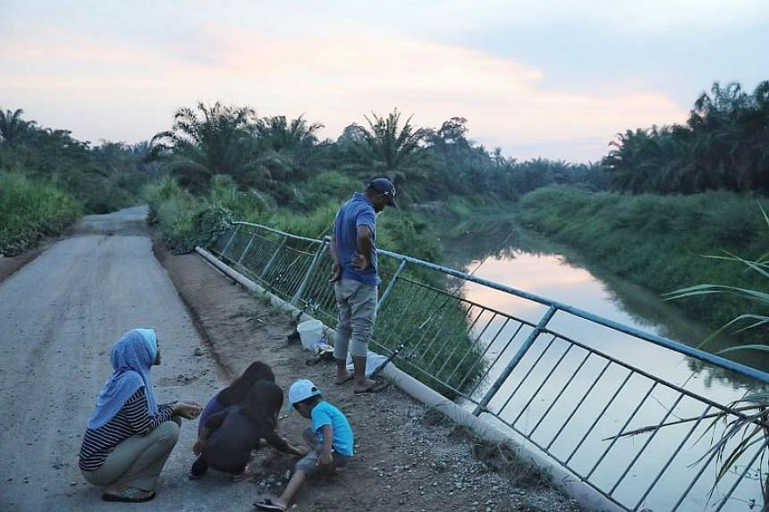 High levels of ammonia were detected in Johor's Sayong River (right), which left about 17,000 households in Kulai without water. According to news reports, water supply was restored to about 80 per cent of households in Kulai yesterday.
