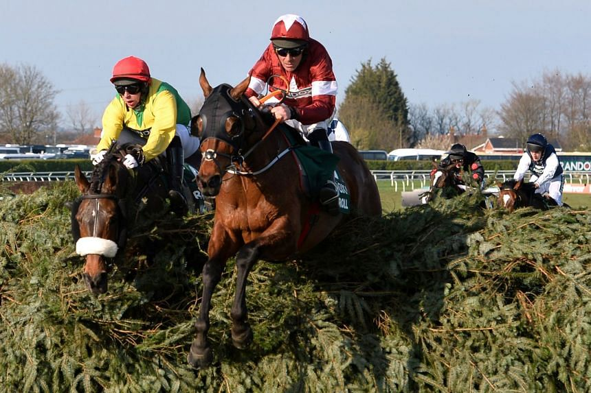 Tiger Roll in action during the Grand National.