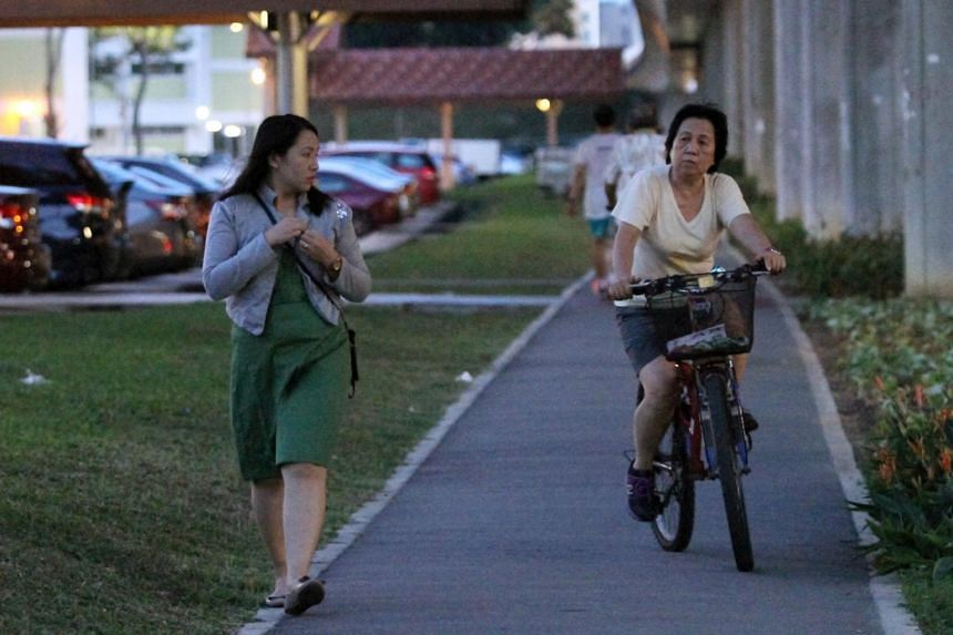 """Pedestrians, especially the elderly and the very young, cannot safely share a walking path with anyone on a """"machine"""" of any kind."""