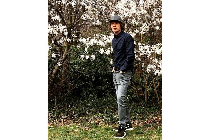 Mick Jagger posted a photo which shows him standing casually before trees in bloom.