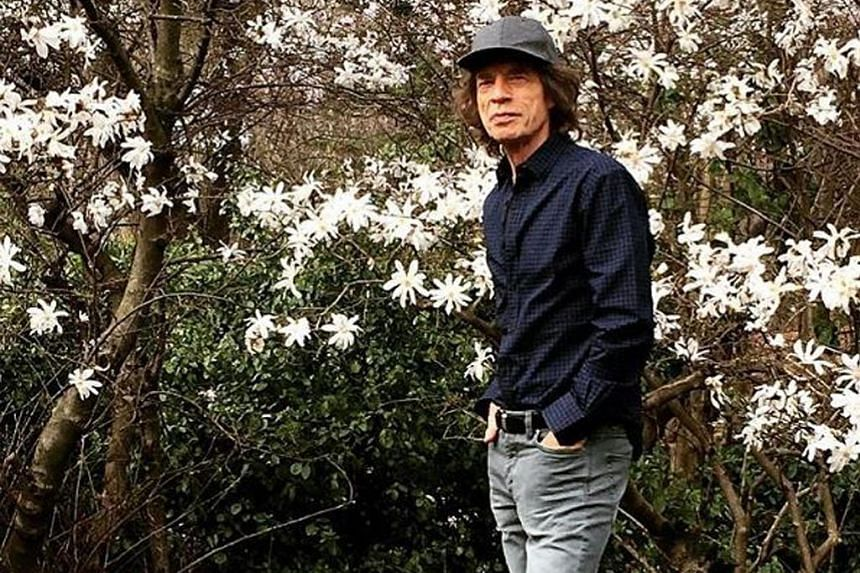 Rolling Stones frontman Mick Jagger went for a walk in the park after heart valve replacement surgery in New York.