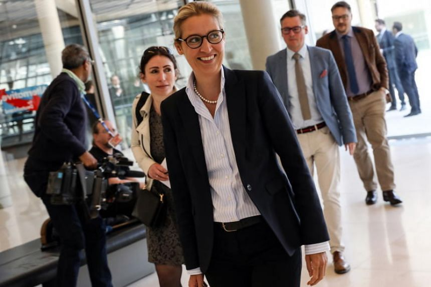 "Ms Alice Weidel, the parliamentary group leader of the Alternative for Germany, implied in a tweet a connection between the blaze and previous anti-Christian ""attacks"" in France."