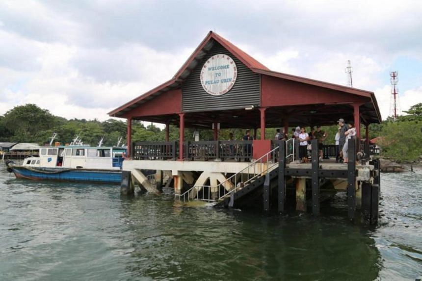 NParks is part of the Friends of Ubin Network, which includes over 40 interest groups ranging from nature and heritage enthusiasts to villagers and researchers.