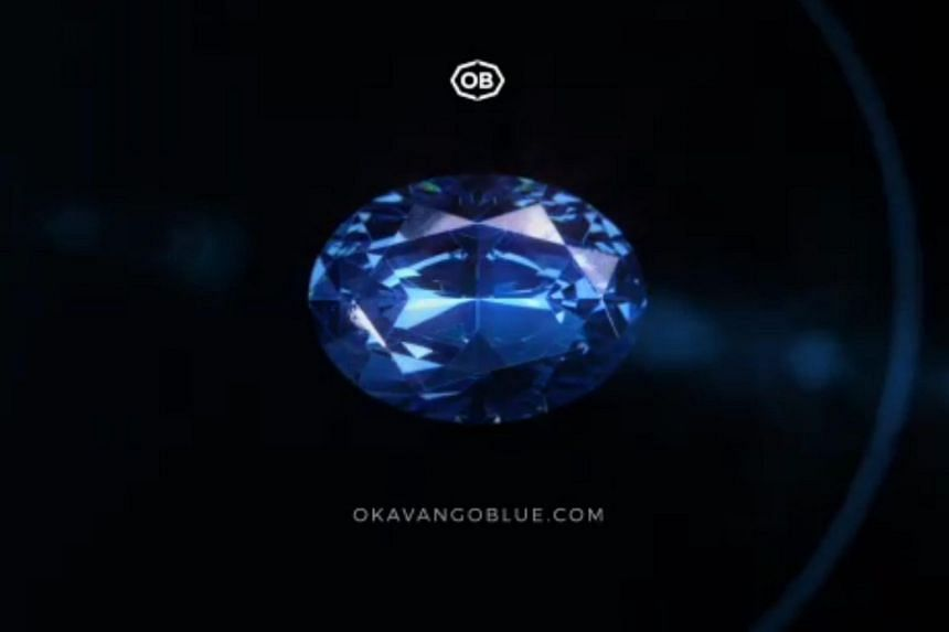 """The oval-shaped diamond has been named """"The Okavango Blue"""" in honour of the Okavango Delta, the country's wildlife-rich world heritage site."""