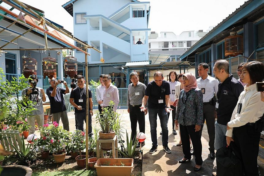 President Halimah Yacob toured the grounds of The Helping Hand, a halfway house for the rehabilitation of former drug addicts, yesterday. The Helping Hand's executive director Richard Khalil (with hands outstretched) introduced Madam Halimah to the f