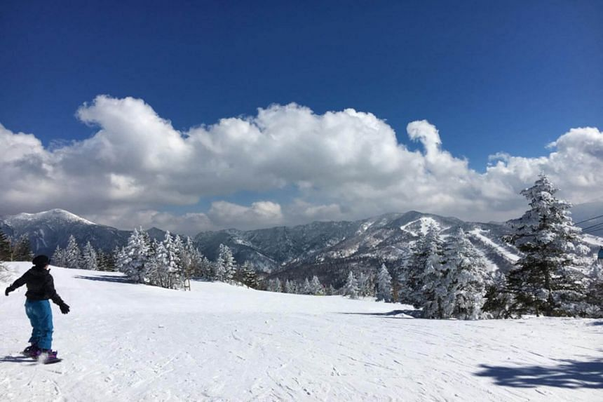 Shiga Kogen in Nagano sprawls over more than 600 hectares, so it is a good choice for snow sports enthusiasts.