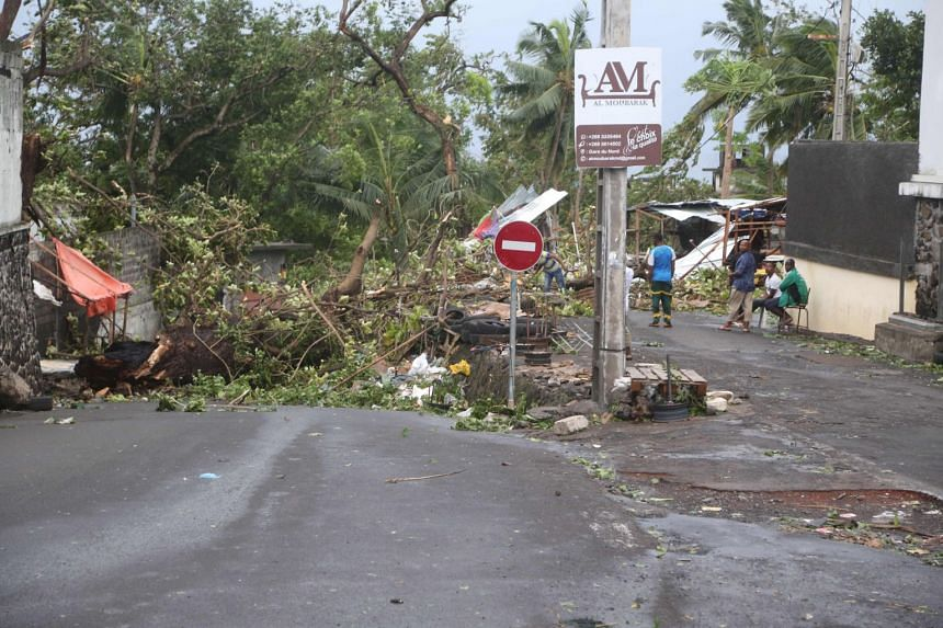 People stand by fallen trees on April 25, 2019 in Moroni after tropical storm Kenneth hit Comoros before heading to recently cyclone-ravaged Mozambique.