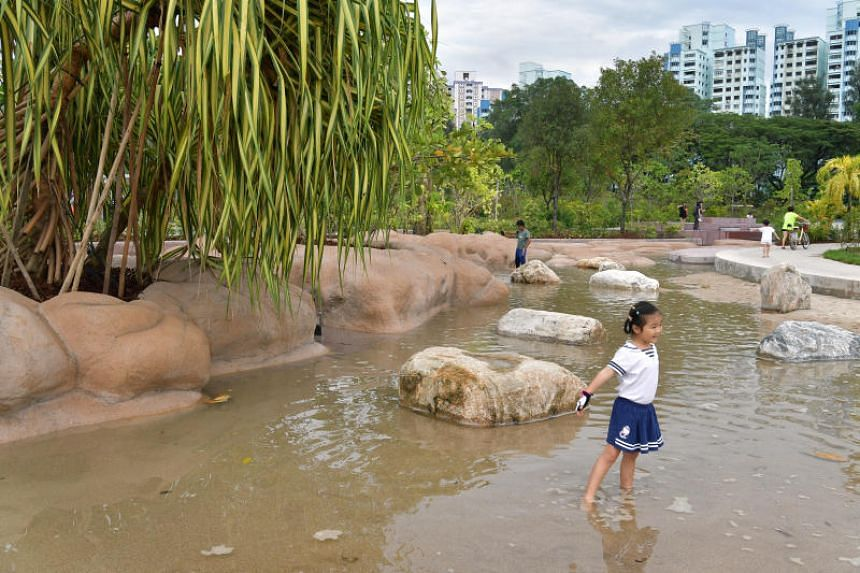 Clusia Cove features two water-play pools, which mimic ripples, tidal movements and coastal currents.
