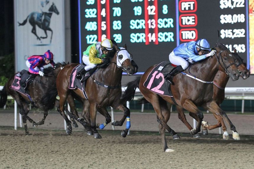 S. Shafrizal steering Big Hearted (No. 12) to a debut win in Race 3 at Kranji yesterday.
