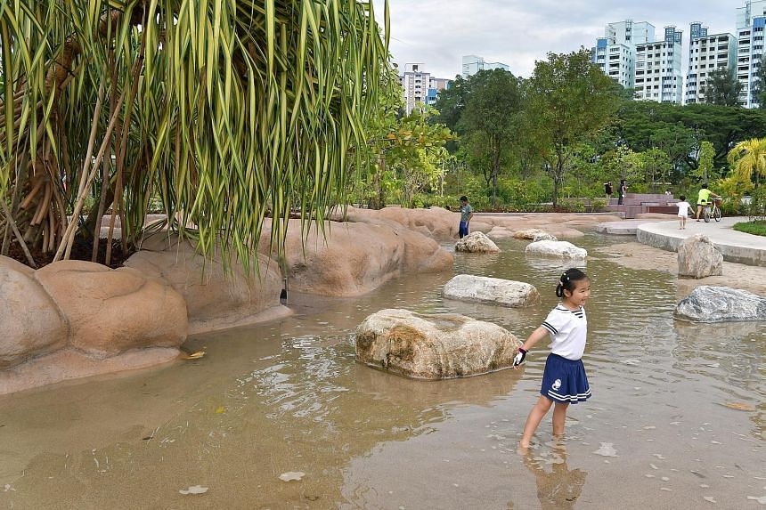 Clusia Cove, a children's play area where visitors can learn about water dynamics through play.