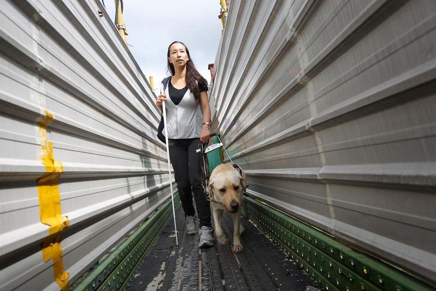 Labrador guide dog Esme helps its handler, Ms Cassandra Chiu, navigate the path around a construction site near King's Road after church service.