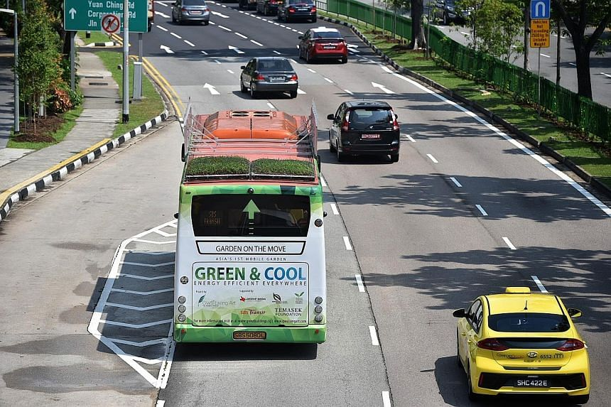 One of the SBS Transit buses with rooftop greenery. The three-month study will determine whether the green roof can lower temperature inside the buses, potentially saving on fuel.