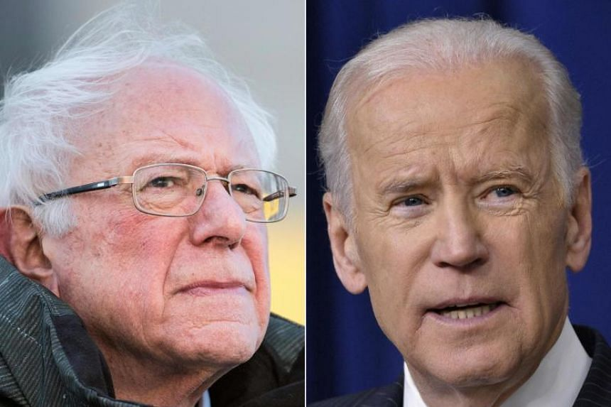 Former vice president Joe Biden and liberal US senator Bernie Sanders are ruling the race, although it is still nine months before the first votes are cast in the state-by-state nominations process.