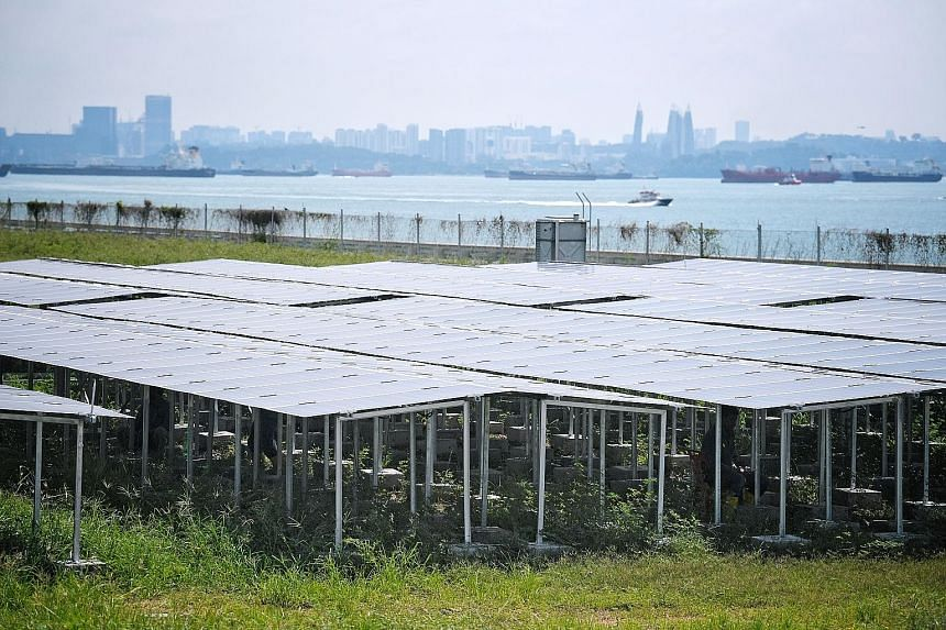 Solar panels at Nanyang Technological University's Renewable Energy Integration Demonstrator-Singapore site on Semakau Island. The micro-grid system, the first of its kind in South-east Asia, serves as a platform for companies to test research projec