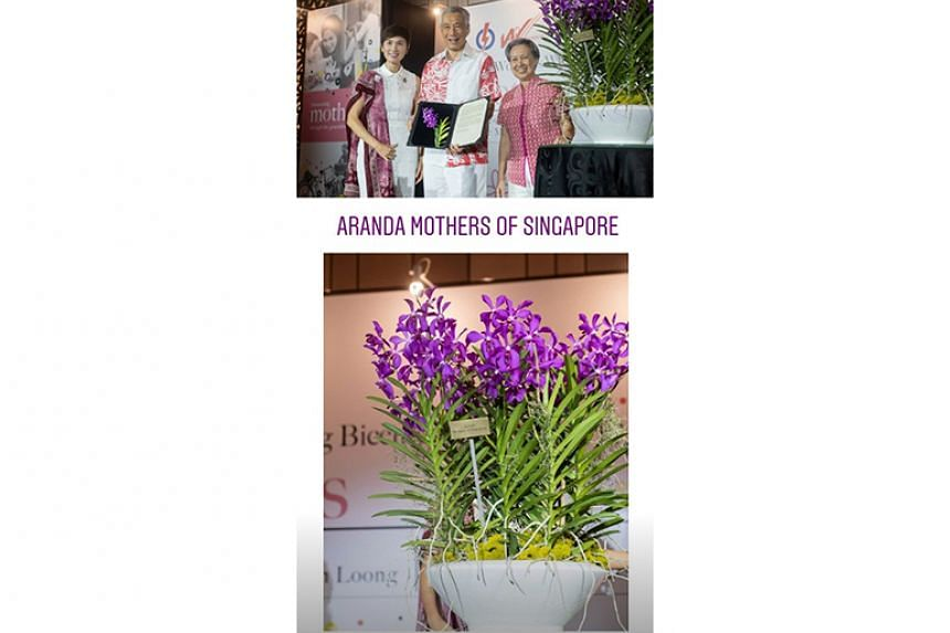 PAP Women's Wing pays tribute to mothers with orchid naming, donations to charities