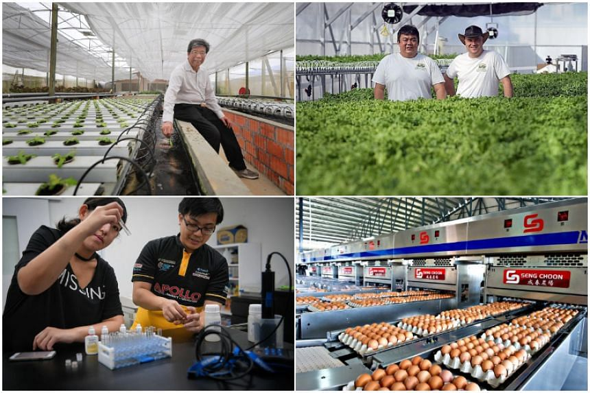 From being an agrarian society and an island blanketed in farms in the 1960s, Singapore is now exploring modern options to farm efficiently.