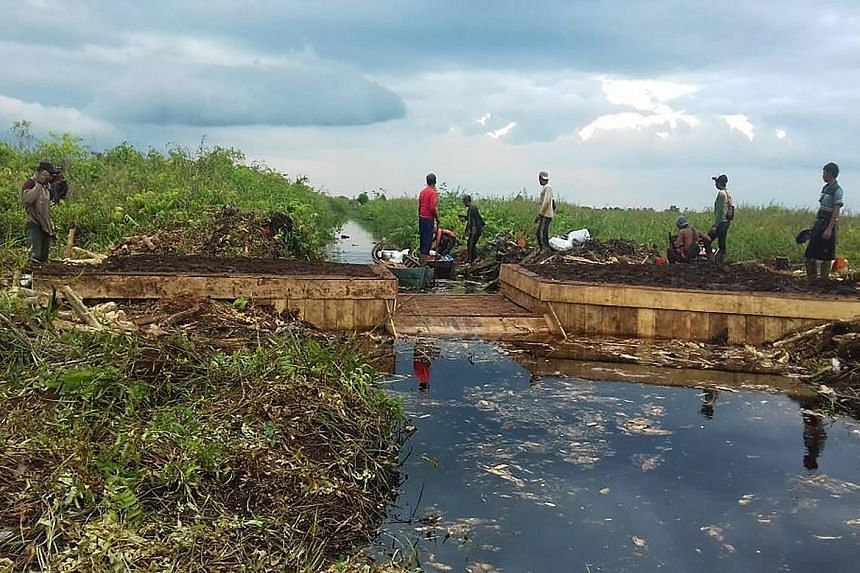 Villagers constructing a dam using local materials, such as wood and compacted soil, across a peatland drainage canal in Desa Seponjen in Sumatra's Jambi province. So far, the agency has worked with 262 villages across seven provinces, restoring 679,